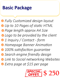 Website Basic Package